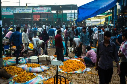 The flower markets starts buzzing with life by 3 am. It is a 24 hour market, but major portion of work happens between 3 am to 10 am.